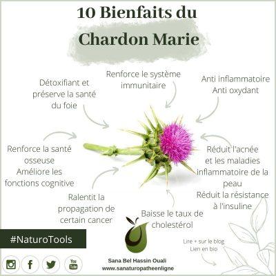 bienfait_chardon_marie