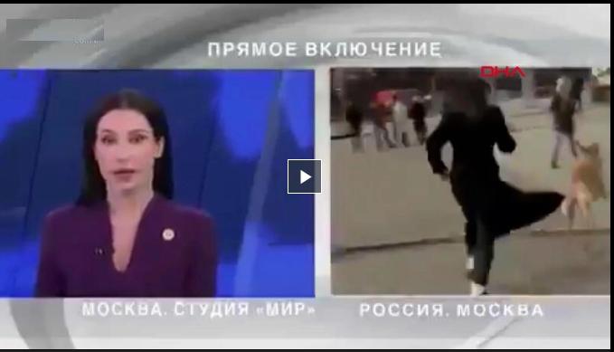 Köpek, canlı yayında mikrofonu kaptı-VİDEO