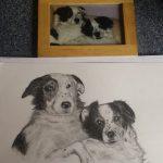mf-dogs-1-1024x807