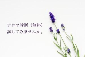 aromashindan-banner