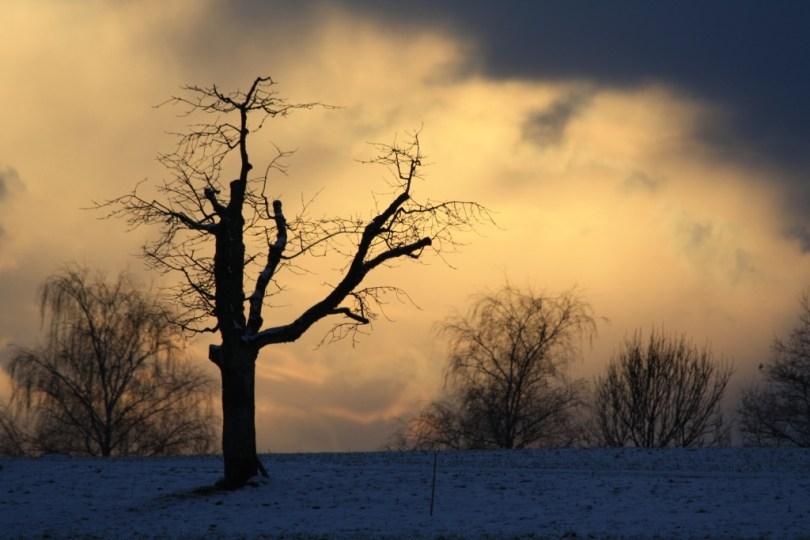 He trust alone that God forgives IMG_3839b