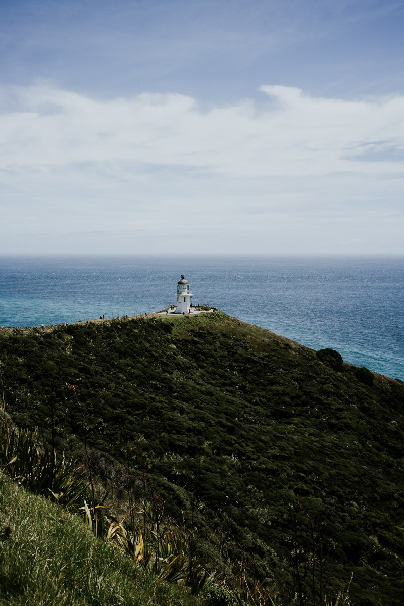Things to do in Northland, NZ