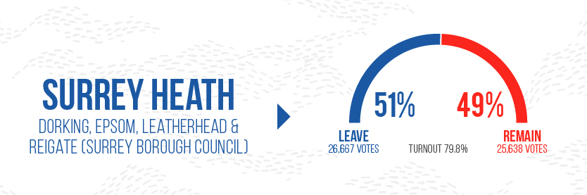 Brexit Graphics - Surrey Heath
