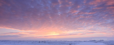 Winter sky.
