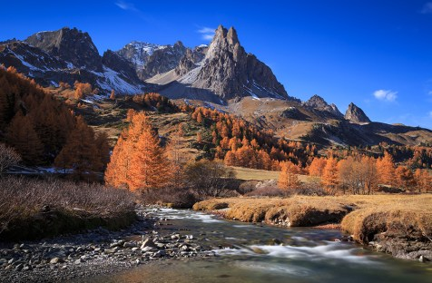 The river Claree and Larch trees in Vallee de la Claree during an autumn day.