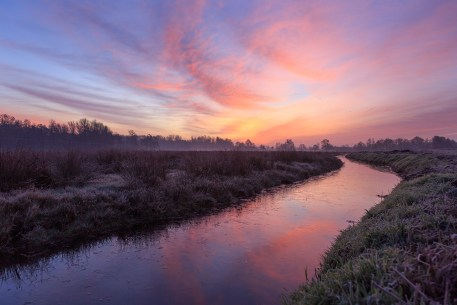 Tranquil, pink dawn at a ditch in the Dutch countryside. Groningen, Holland.