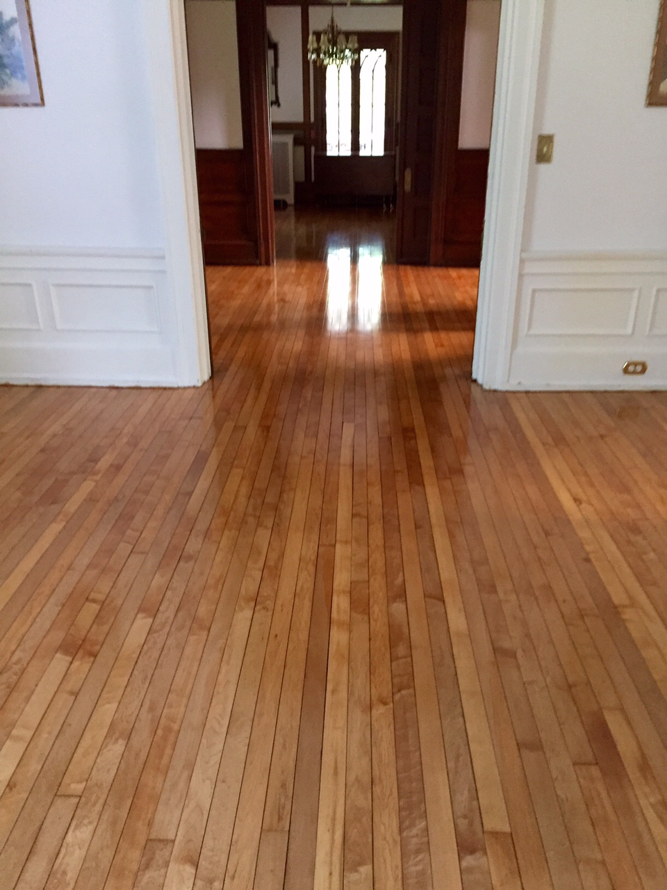 sandfree refinishing hardwood floors in richmond