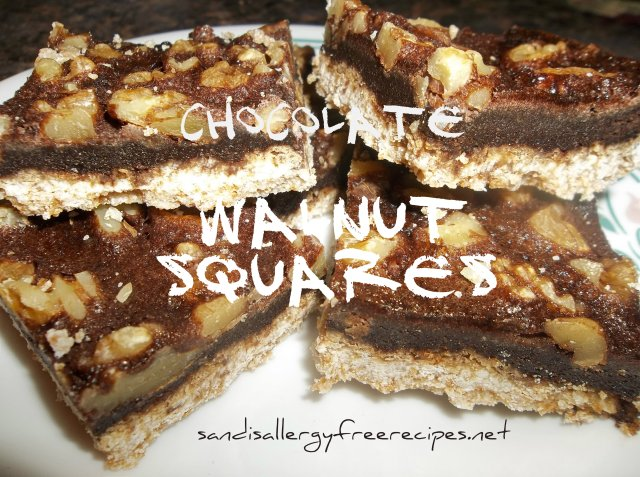 Chocolate Walnut Squares 2