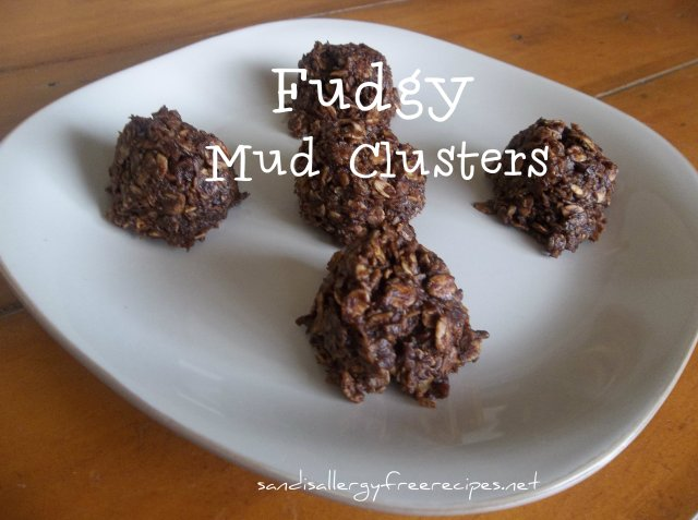 Fudgy Mud Clusters