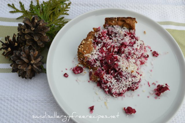 Coconut Cranberry Delight- Paleo