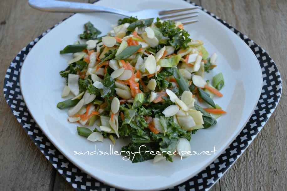 Ginger Sesame Oriental Cabbage Salad