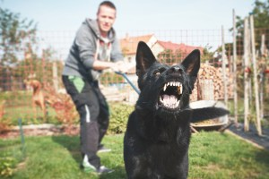 man with angry dog on leash - Bismarck Dog Bite Injury Attorneys - Sand Law PLLC - North Dakota