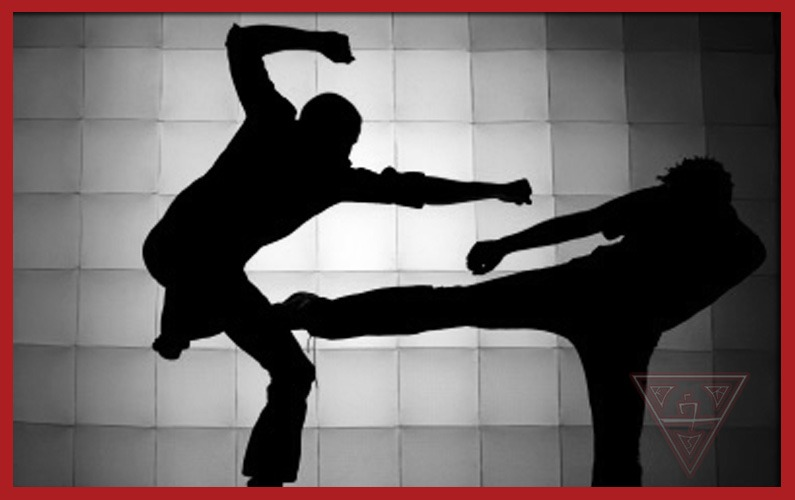 Martial Arts Silhouettes Sparring