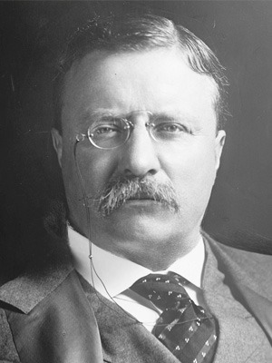 Theodore Roosevelt Pic