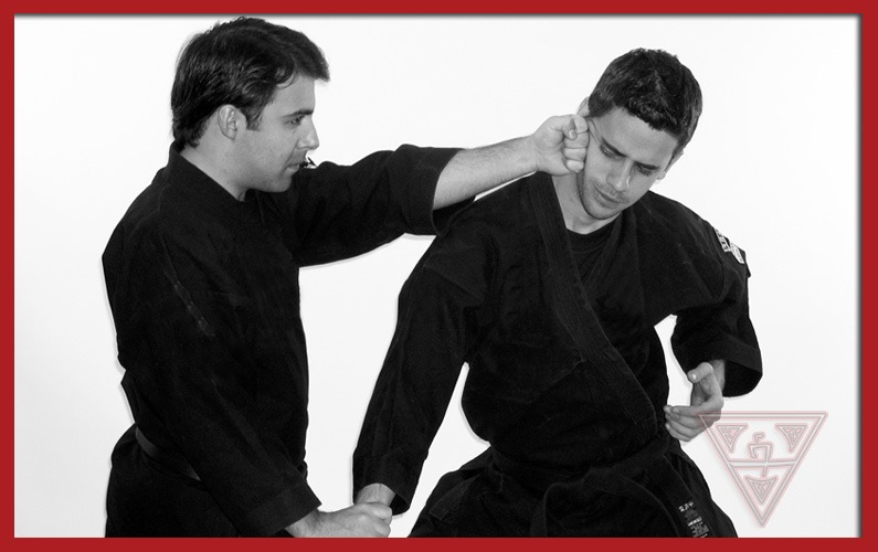 What Is Kenpo 5.0 and Why Is It So Popular?