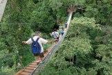 amazon tours sandoval lake lodge