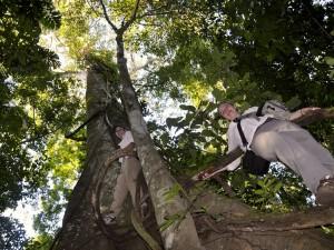 amazon wildlife chuncho Macaw Clay Lick tambopata reserve sandoval lake lodge
