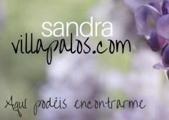 LOGO Sandra web