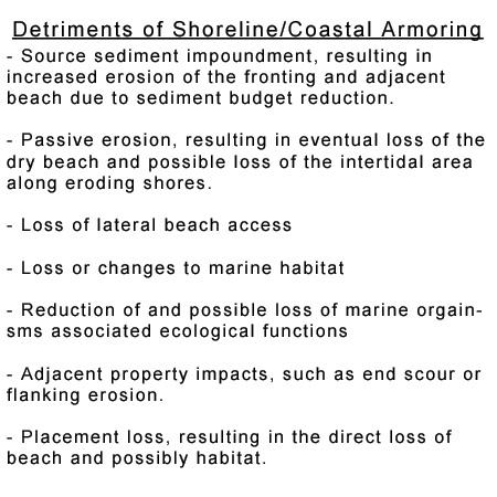 Coastal Armoring, Cons of Coastal Armoring
