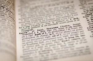 dictionary excerpt on focus