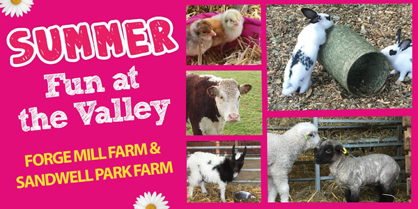 Summer fun at the Valley