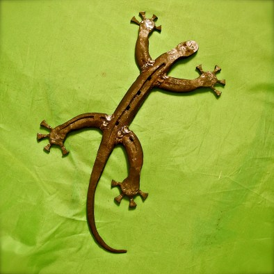 Horseshoe gecko by Charlie