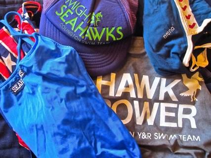 hawk power