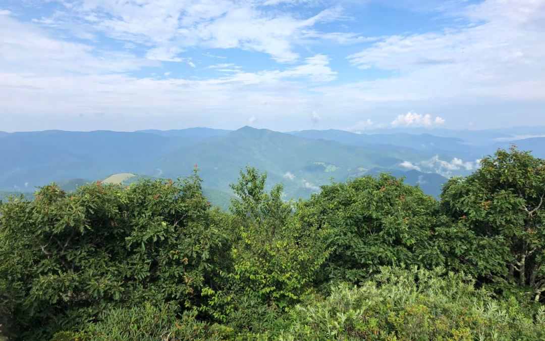 View from top of Mt. Pisgah