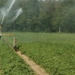 relatorio-aponta-solucoes-conservacao-agua