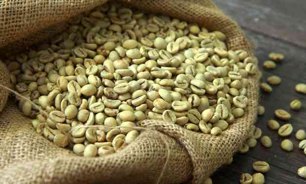 Green Coffee Bean Review