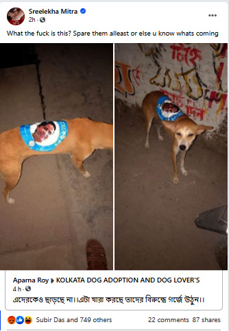 TMC sticker on street dog