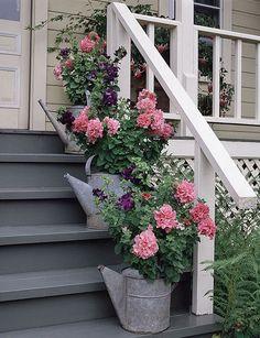 fiori,vasi,shabby,arredo shabby,giardinaggio, parete fiorita,imbuti arrugginiti+