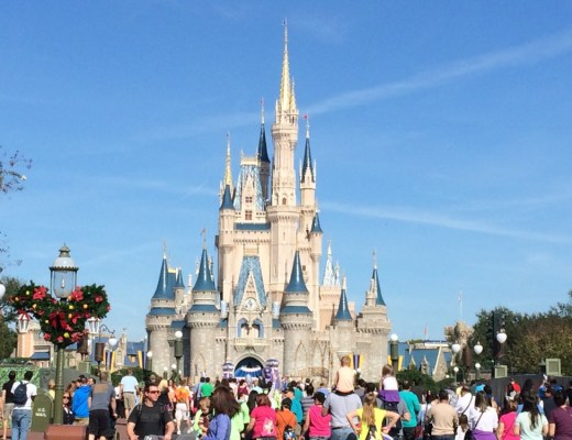Top 10 Rides Adults Will Actually Enjoy At Disney