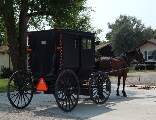 Breaking (Into) Amish