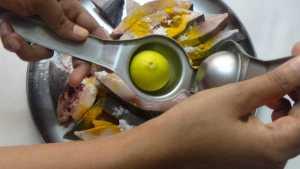 Chepala pulusu -lemon