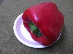 Capsicum chutney -red capsicum