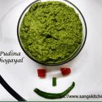 Pudina thogayal -thumbnail