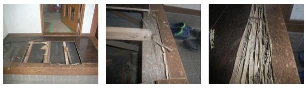 上り框のシロアリ被害例