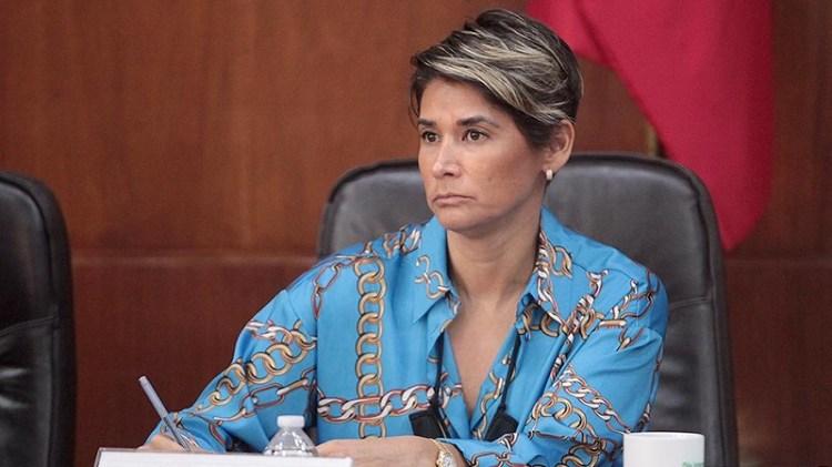 Se requiere un presupuesto estatal enfocado a la atención de grupos vulnerables: dip. Gabriela Martínez Lárraga