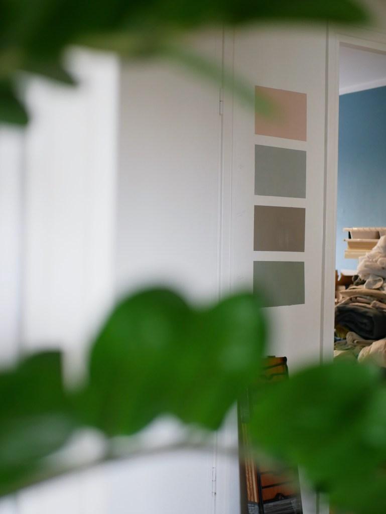 En vägg målad med olika färgprover från Auro, en rosa (Sidenväveriet), en grågrön (Gråpäron), en brungrå (Varmgrå) och en mörkgrön (Sandskogsgrön)