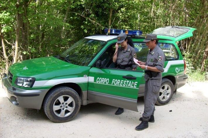 Risultati immagini per corpo forestale dello stato