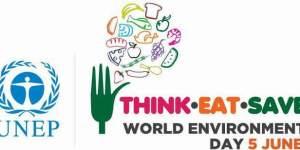 UNEP-World-Environment-Day-logo-large-qatarisbooming.com_