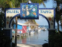 Blue Tang Inn San Pedro Belize
