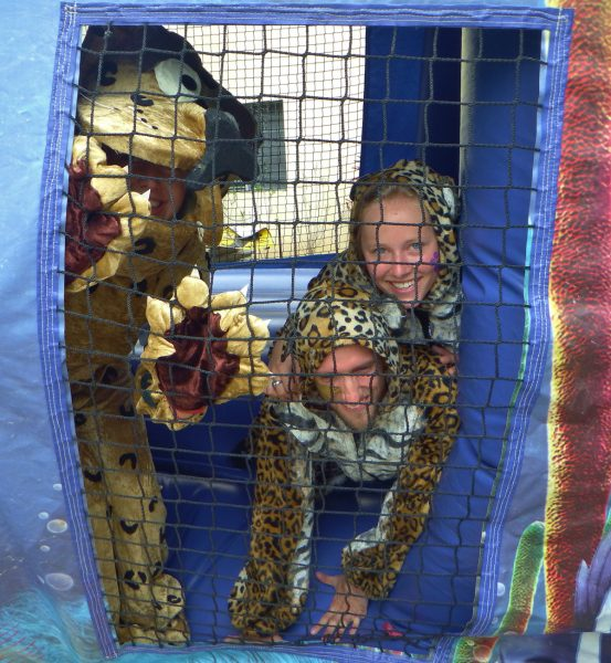 5 adult Jaguars in bouncy castle
