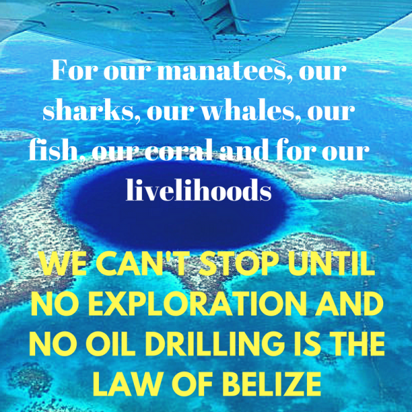 save-our-manatees-our-sharks-our-whales-our-fish-our-coral-reef-our-livelihoods-our-heritage