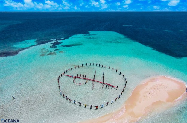 No oil. Photo from Oceana Belize.