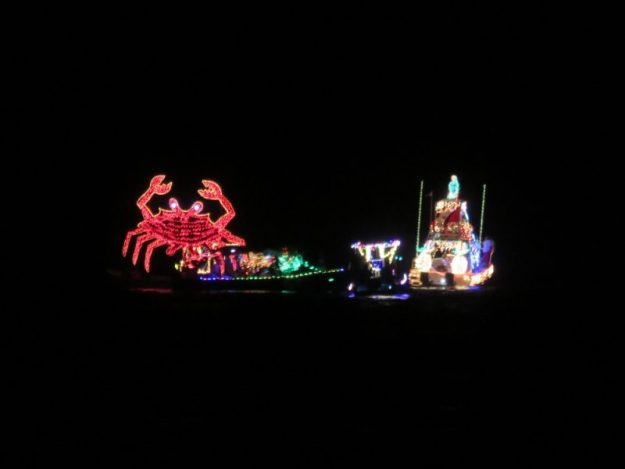lighted-boat-parade