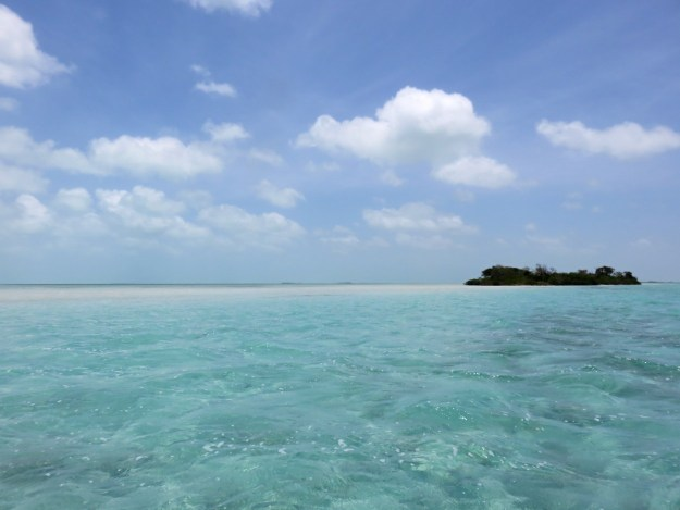 sandbar-leeward-side-of-ambergris-caye