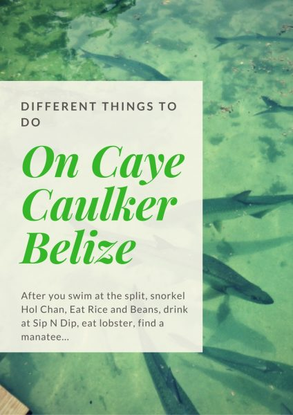 Caye Caulker Belize is awesome - here are some different things you can do when you visit.