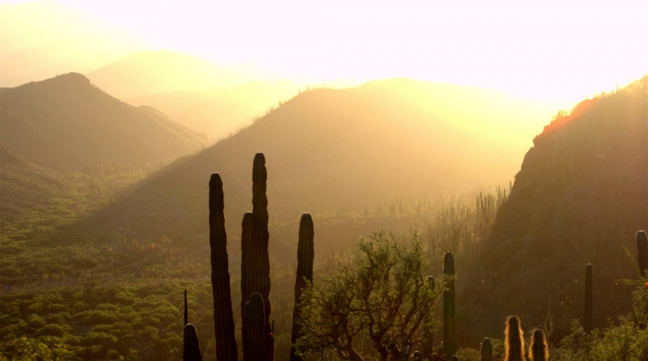 Geoturismo La Bocana